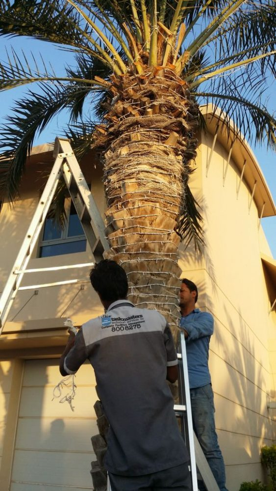 property maintenance services in dubai